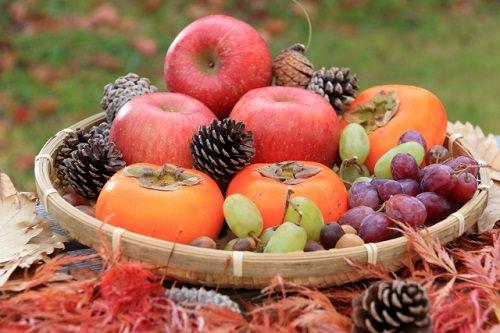 秋のフルーツの画像