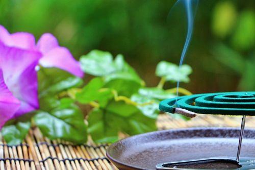 蚊取り線香の画像